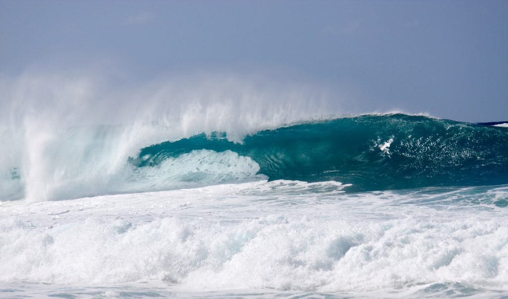 best things to do in Oahu; North Shore beach waves surfing
